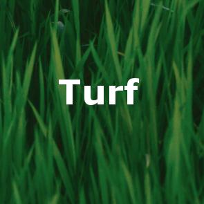 turf_button